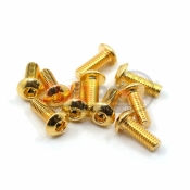 YEAH RACING, SHP-306GD 12.9 GRADE STEEL 24K GOLD COATED SCREW 3X6MM HEX SOCKET BUTTON 10PCS